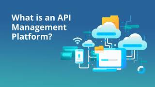 API Management Platform